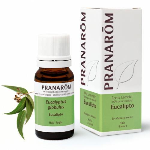 `pranarom aceite esencial eucalipto